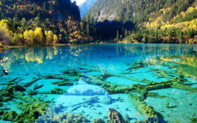 Crystalline Turquoise Lake – Jiuzhaigou National Park – China